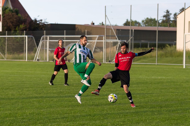 FCNE2 vs FCKS-Sulgen-10
